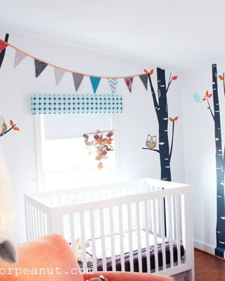 Rental Home Nursery