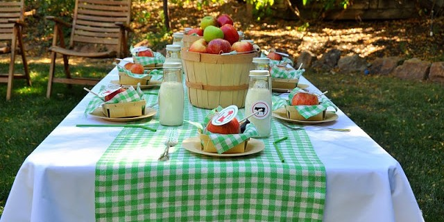 Modern_Farm_Birthday_Party