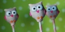 Owl_Cake_Pops_21_007_copy