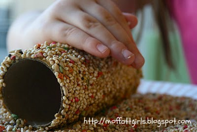 Toilet Paper Roll Bird Feeders - Featured on Design Dazzle