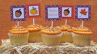 Orange and Blue Harvest Party