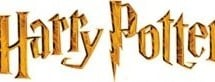 harry-potter-party-ideas2