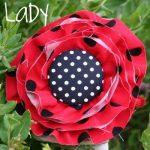 Ladybug, Ladybug – Birthday Party