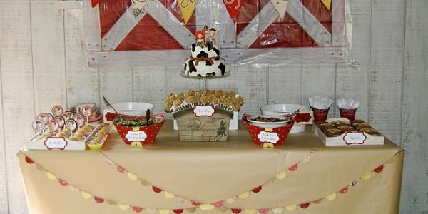 jessie-cowgirl-party-decorating-ideas