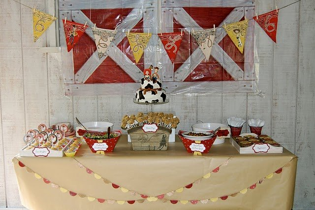 Toy Story: Cowgirl/Cowboy Party - Design Dazzle