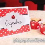 Ladybug Themed Birthday Party with FREE Printables!