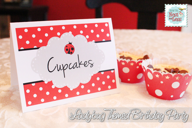 ladybug-birthday-party2
