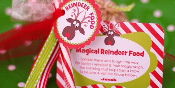 reindeer_food6