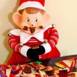 Fun Elf Ideas & ELF Link Party