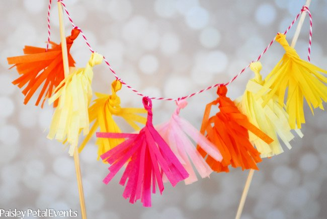 Mini Tissue Tassel Garland-2