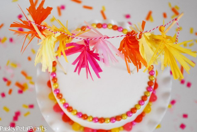 Mini Tissue Tassel Garland Cake Top View