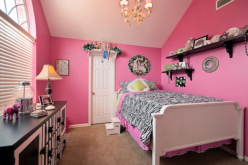 teen bedroom with zebra print accents