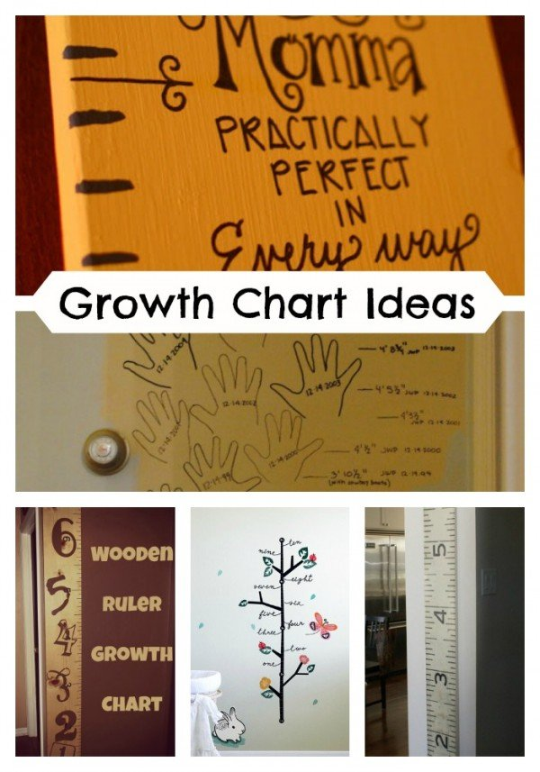 Adorable Growth Chart Ideas that are perfect to track those kids! They grow so fast it is hard to keep track! Check out all the ideas on Decigndazzle.com