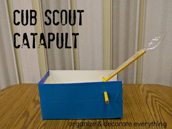 Make a catapult with your kids