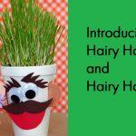 Summer Camp: Fun Grass Heads
