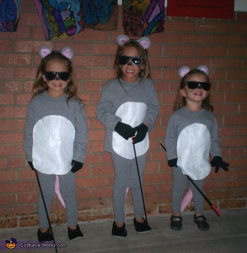 3 blind sister