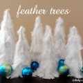 feathertreescover