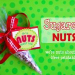 Neighbor Gift Idea – Sugared Nuts
