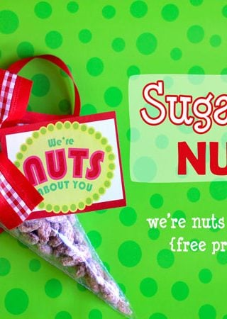 Neighbor Gift Idea – Sugared Nuts