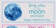 valentine love you to moon