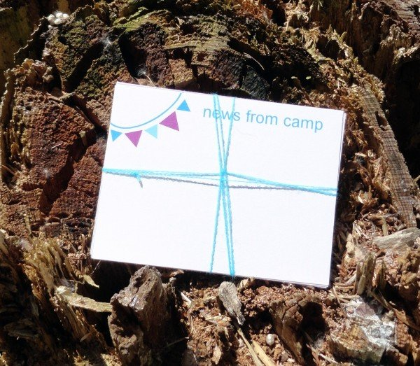news from camp