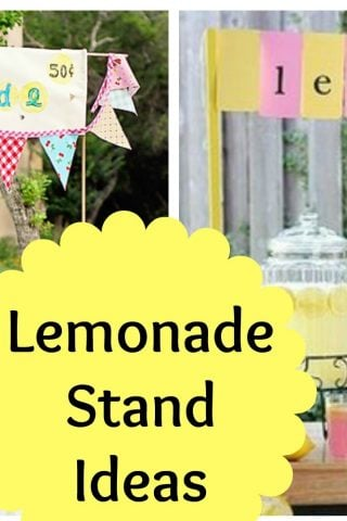 Lemonade Stand Ideas