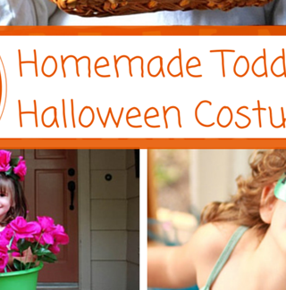 Darling Homemade Toddler Girls Halloween Costumes