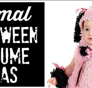 Cute Animal Halloween Costume Ideas for Kids