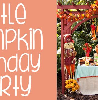 Little Pumpkin Fall Harvest Birthday Party