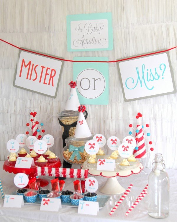 Mister or Miss Gender Reveal party