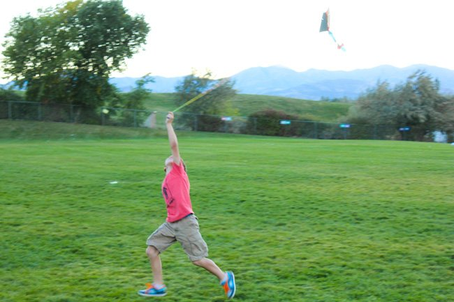 Target Toy Emporium Lets go fly a kite