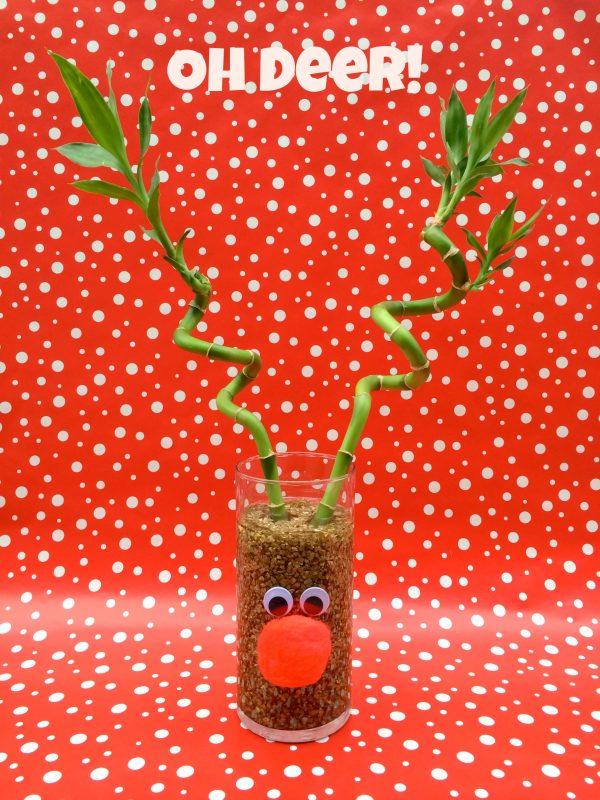 Rudolf Centerpiece Oh Deer