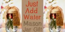 Just Add Water Mason Gift Jar