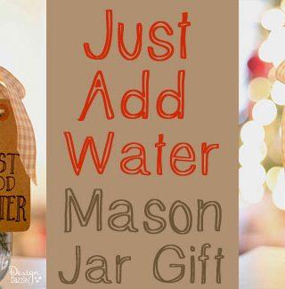 Mason Jar Gift: Just Add Water!