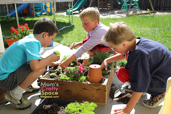 fairy garden and boys
