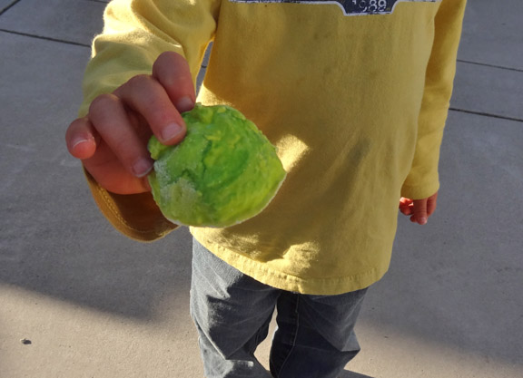 Leprechaun Rocks! Fun science experiment for St. Patrick's Day!