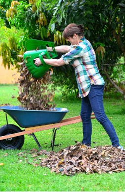Okay...this is a mom MUST HAVE. Someday I will trick my child into doing yard work with these! So much easier!