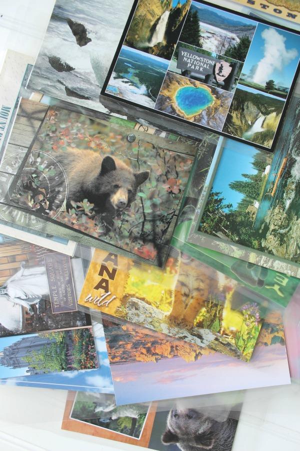 Design Dazzle postcard book