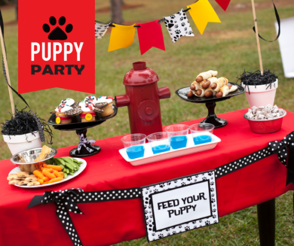 puppy party on a budget