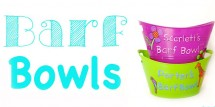 Barf Bowls for kids
