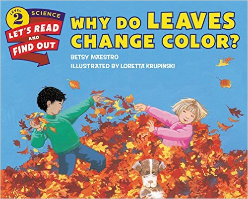 Why Do Leaves Change Colors - a book about fall