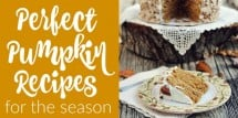 Perfect pumpkin recipes for the season