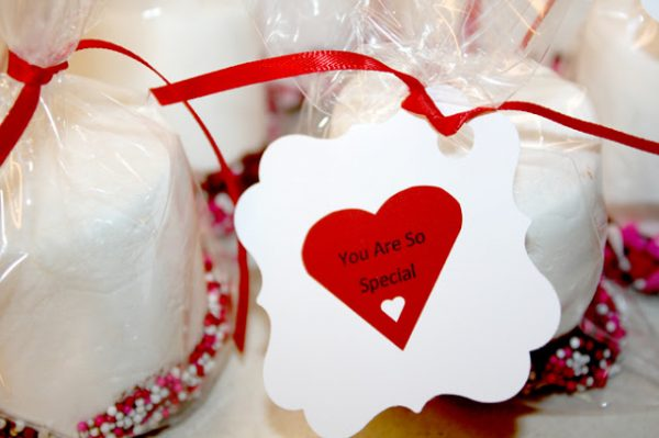 {DIY TUTORIAL} Valentines Day Chocolate Dipped Marshmallows created by BellaGrey Designs 007