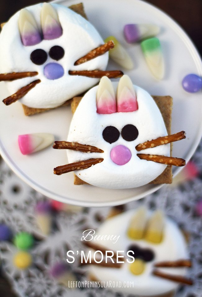 Adorable Bunny S'mores Fun Easter Treats