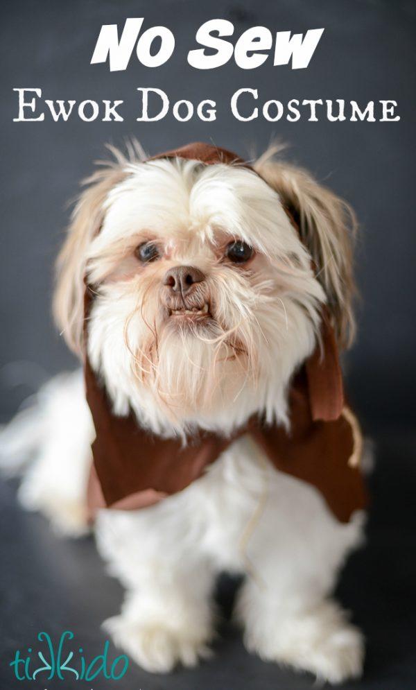 Ewok No Sew Dog Costume Tutorial