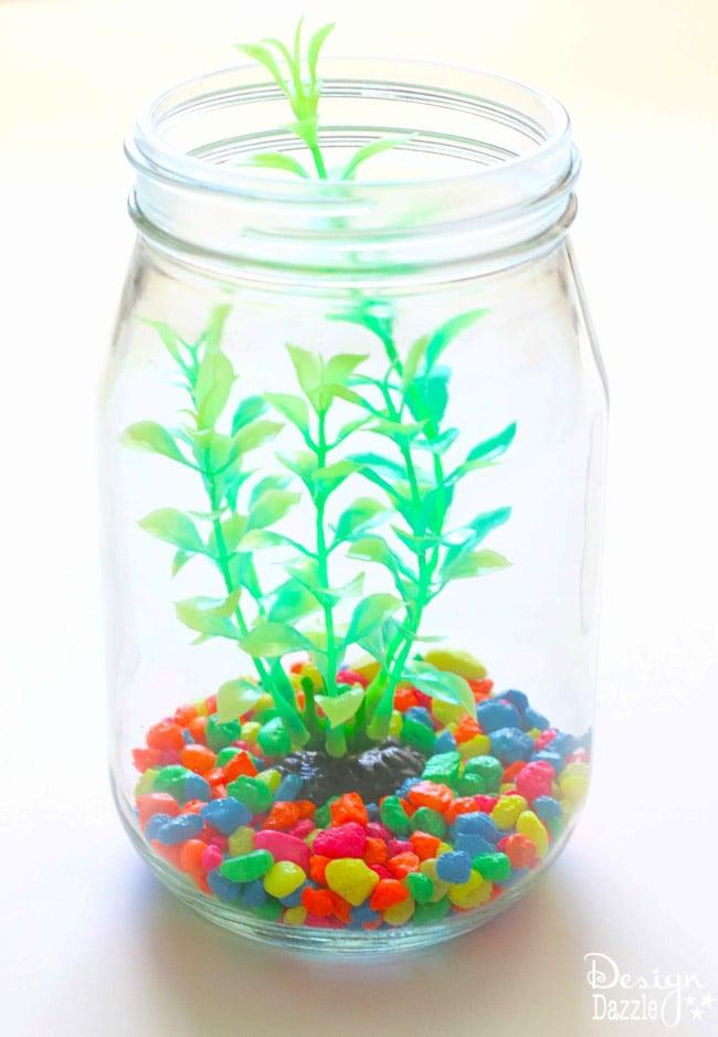 Mason Jar Aquarium-2