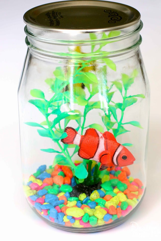 how to make an aquarium for school project