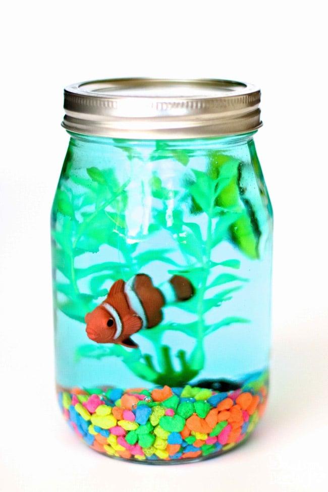 Mason Jar Aquarium-5