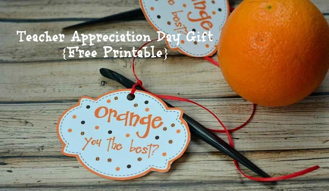 vI've put together 14 phenomenal and easy teacher appreciation gift ideas that will show your child's teacher just how much they meant to you! | Design Dazzle