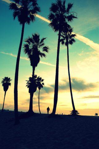 A Weekend at Venice Beach Canals